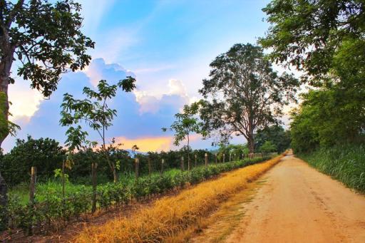 Camino en La Cañada